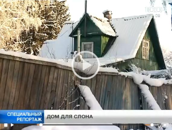 Юкки - новое место для Ленинградского зоопарка? (видео)