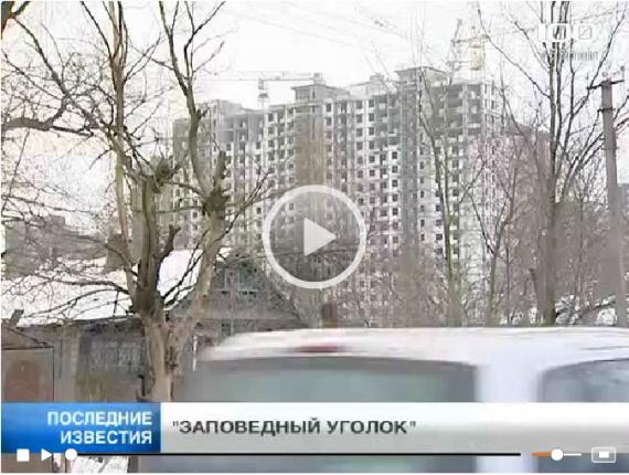 «Заповедный уголок» в Кудрово вытесняется новостройками