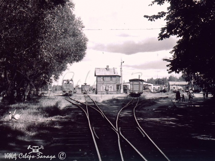 Ириновская железная дорога. Узкоколейка в Рахье