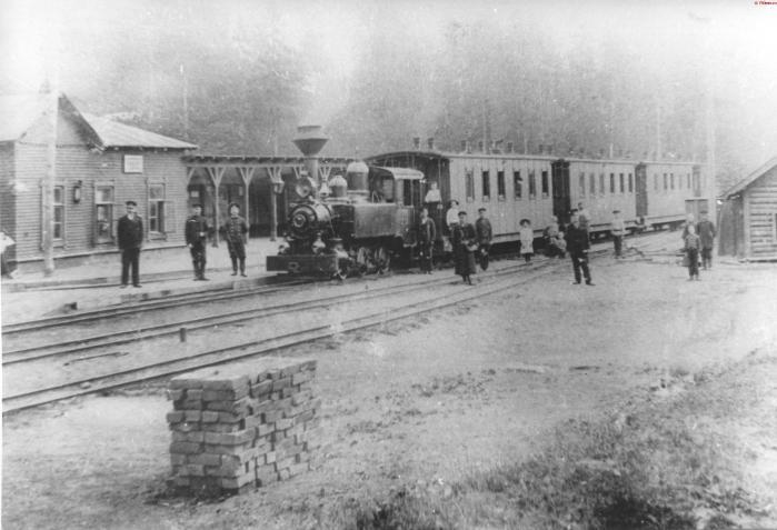 Ириновская железная дорога. Станция Рябово.