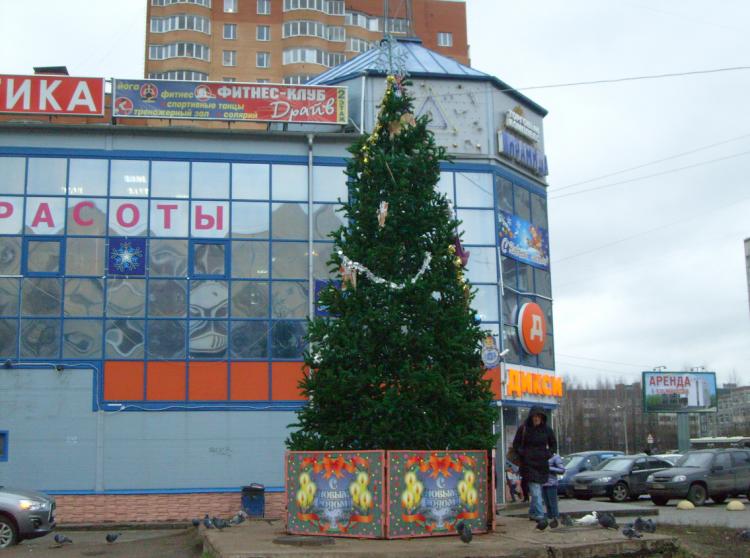Стоимость украшения Всеволожска к Новому году превысит 2 млн рублей. Фото: vsevologsk.com