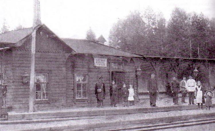 Ириновская железная дорога. Станция Рябово (находилась между станциями Всеволожская и Мельничный Ручей). Ориентировочно 1900-е годы.