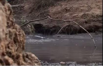 """Активисты """"Зеленого фронта"""" нашли угрозу экологической безопасности в Новом Девяткино"""