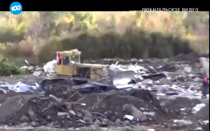 В Кузьмоловском ликвидирована незаконная свалка (видео)