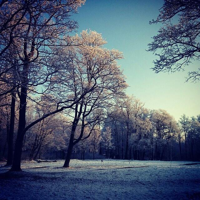 Последнее дыхание зимы в апреле