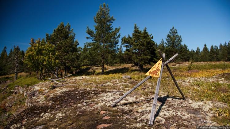 Ладожская радиация до Ленобласти не добралась