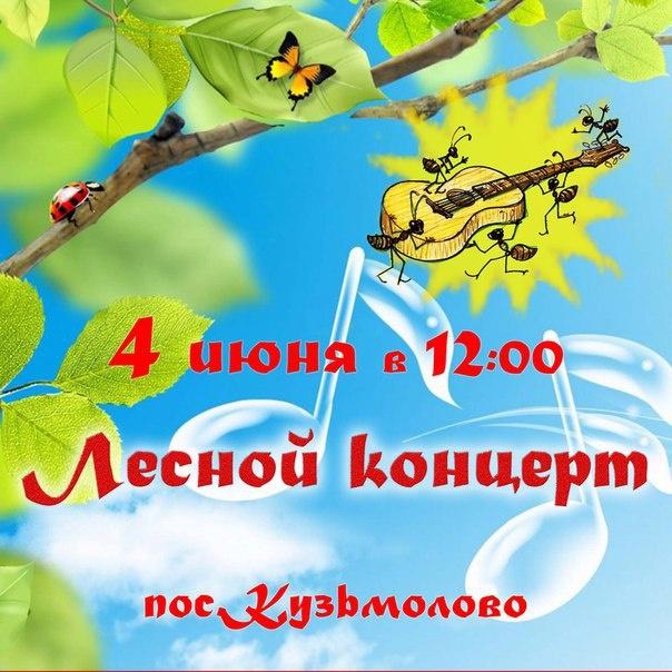 В Кузьмолово пройдёт лесной концерт