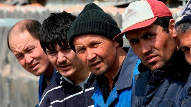 Незаконных мигрантов в Кудрово ловили с ОМОНом