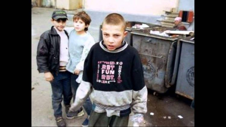 Во Всеволожске беспризорные дети живут на помойке