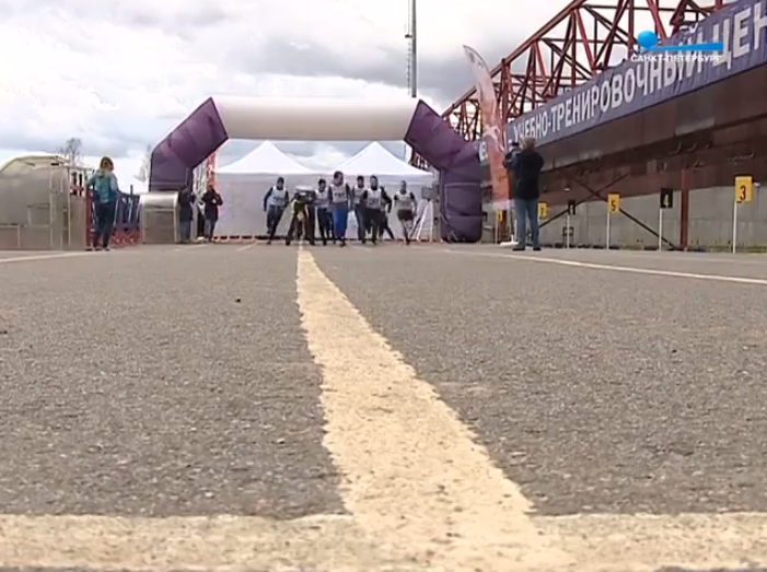 Шесть километров «Путём Победы» прошли участники Всероссийской гонки ГТО (видео)