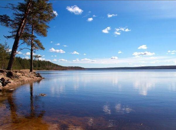 В списке пригодных для купания рек и озер Ленобласти появились новые водоемы