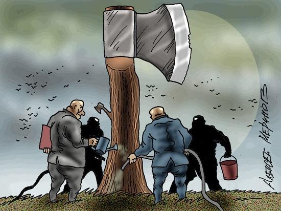 Олигархам узаконили захваченную землю: вопиющую «амнистию» одобрила Госдума