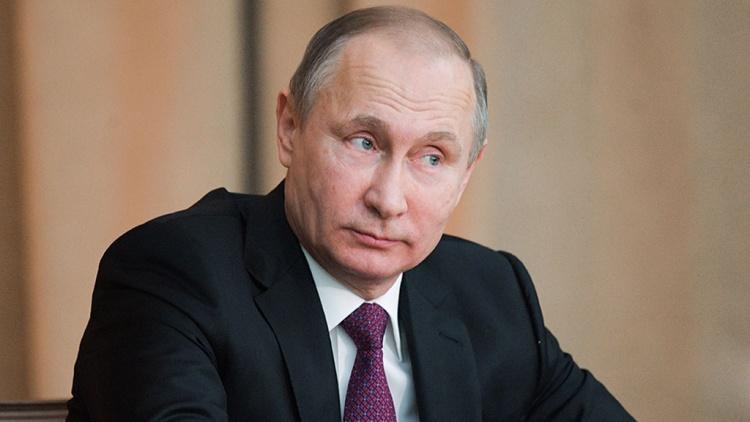Молодежи Ленобласти заплатят за пропаганду петиции в поддержку Путина