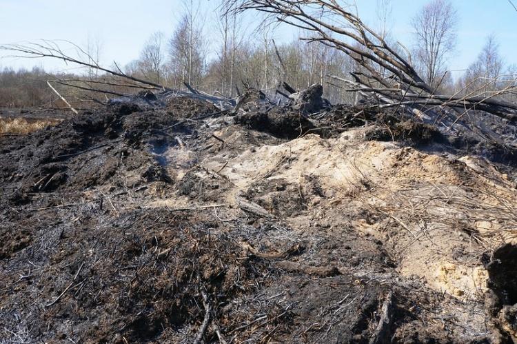 ГУ МЧС по Ленинградской области отказывается тушить торфяные пожары на ранних стадиях развития
