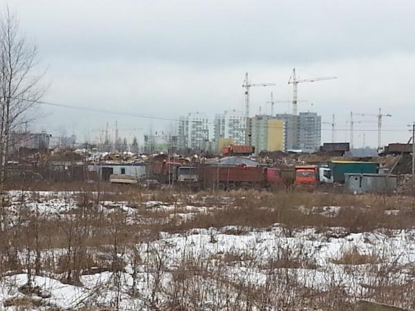 В поля неподалеку от Янино мусор свозят целыми грузовиками