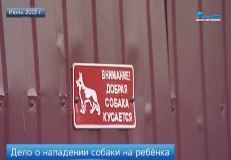 Ответчики по делу о нападении овчарки на трехлетнего ребенка не явились в суд (видео)