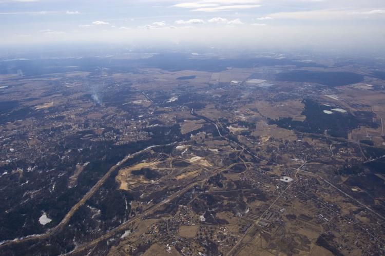 Колтуши: леса на грани исчезновения