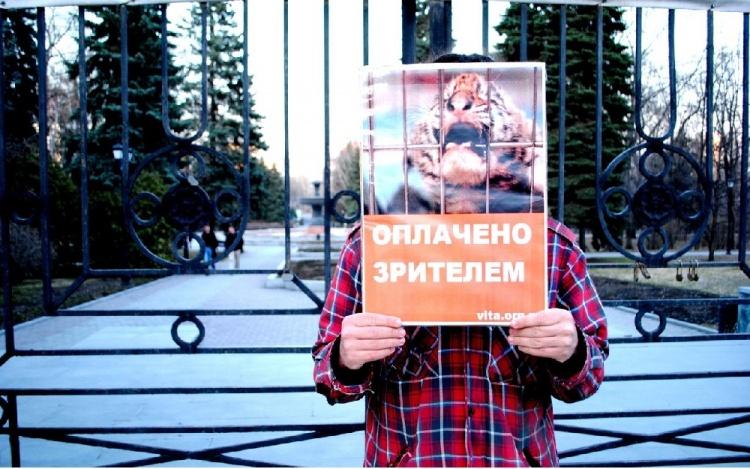 """Жители Всеволожска, Киришей и Тосно вышли на пикет """"За цирк без животных"""""""