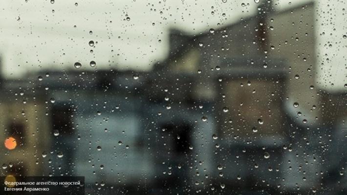 Санкт-Петербург и пригороды пережили самое дождливое лето за всю историю метеонаблюдений
