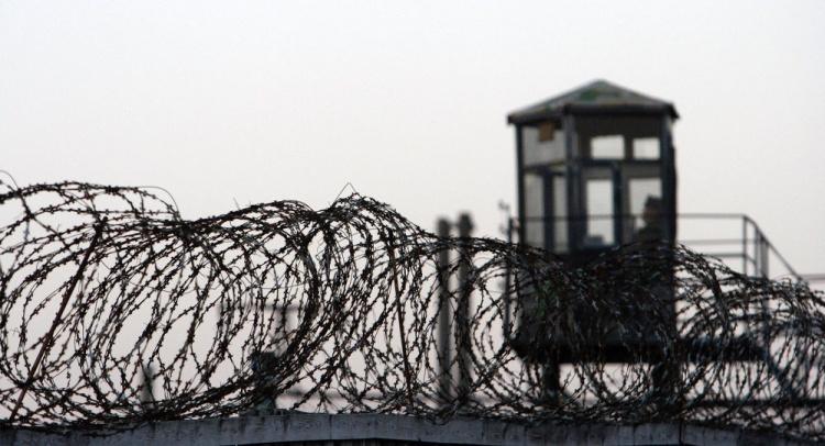 Наемники из Нового Девяткино получили 20 и 11 лет тюрьмы
