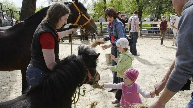 Специалисты раскритиковали идею размещения зоопарка в Юкках