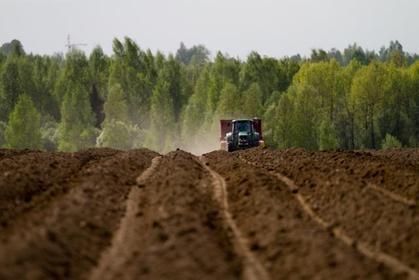 ЗАО «Племенной завод «Ручьи» претендуют на «Звезду качества России»
