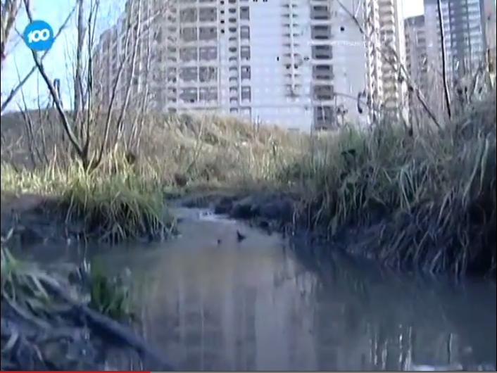 Канализационные трубы Нового Девяткино ведут в окружающую среду (видео)