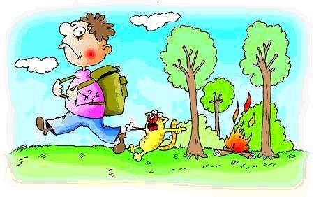 В Ленинградской области объявлено начало пожароопасного сезона