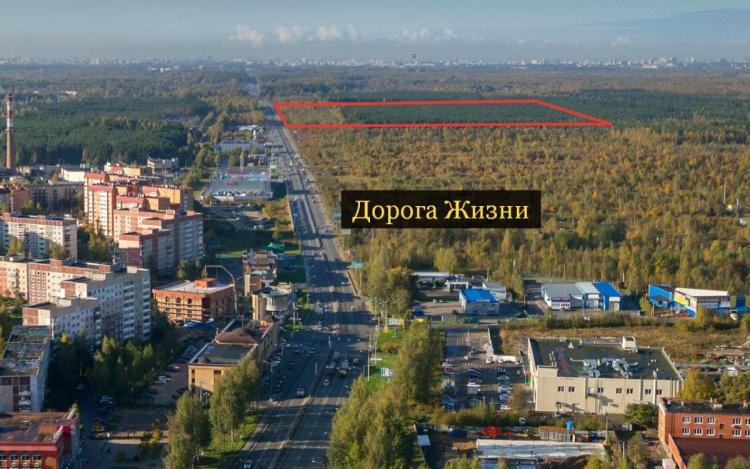 Во Всеволожске на Дороге Жизни построят квартал для 10 000 человек