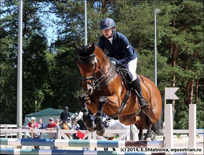 В Энколово пройдут Международные соревнования по конному спорту «Кубок Губернатора Ленинградской области по конкуру»