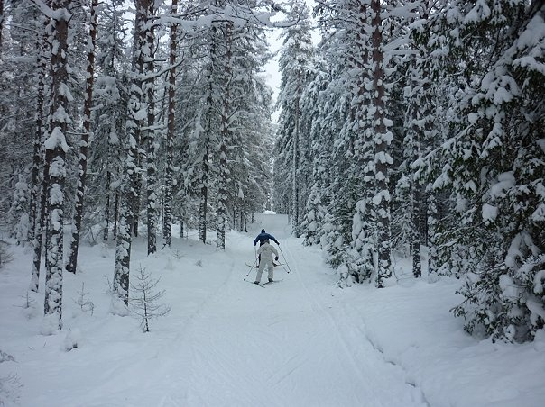 Где во Всеволожском районе можно покататься на лыжах
