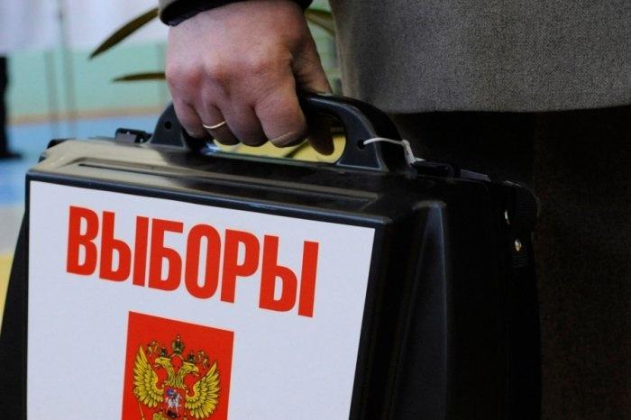 Выборы в посёлке имени Морозова могут признать незаконными