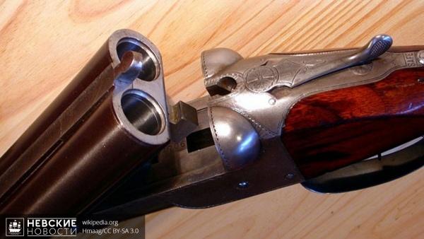 В Борисовой гриве из дома пенсионера выкрали ружья и технику