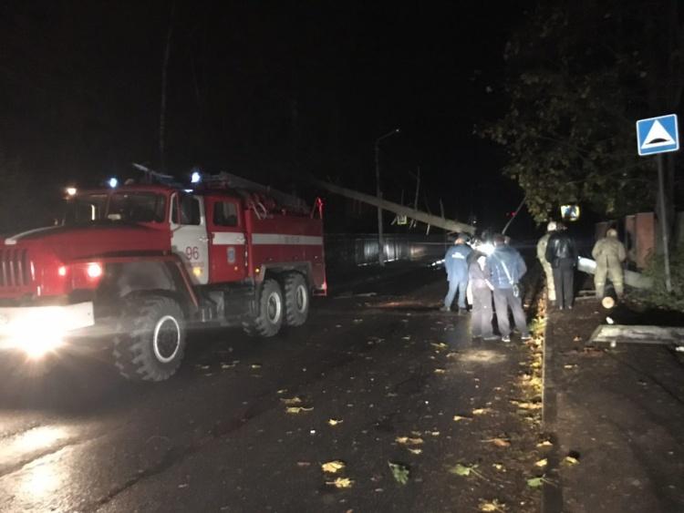 Во Всеволожске ночью от сильного ветра упало дерево, перегородив улицу