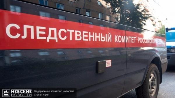 В Невской Дубровке предпринимателя убили из-за того, что он не дал прохожим денег на спиртное