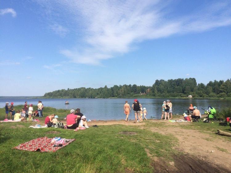Дачники Лемболовского озера напоминают Дрозденко А.Ю. об обещании