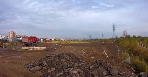 Ущерб от отравления почв мышьяком оценили в 5 миллионов рублей