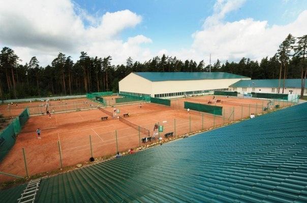 Здание детской теннисной академии во Всеволожске уйдет с молотка