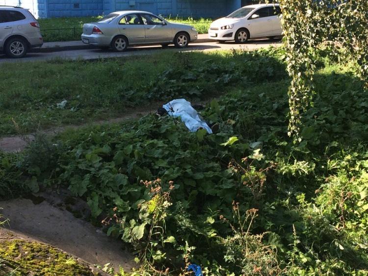 Из реки Оккервиль достали утопленника Подробнее: http://neva.today/news/129612/