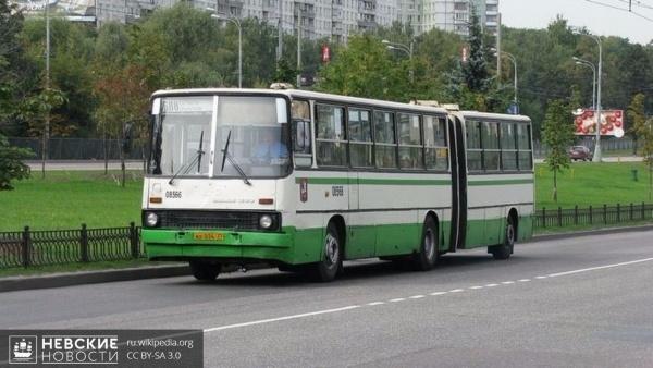 Застраивающиеся жилые районы области свяжут с Петербургом новые автобусные маршруты
