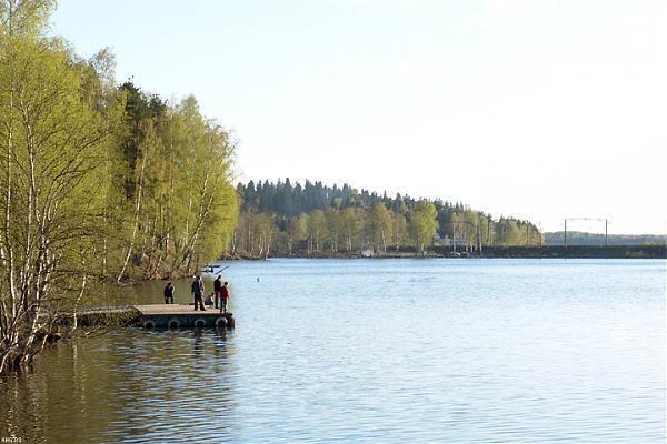 Защитники токсовского леса провели инспекцию на двух стройплощадках