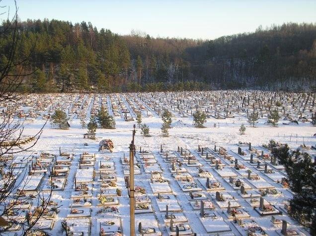 Пропавший пенсионер нашелся мертвым на кладбище в Кузьмоловском