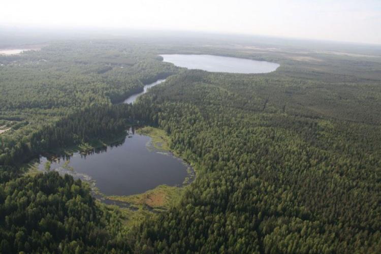 Берега озера Круглое могут застроить