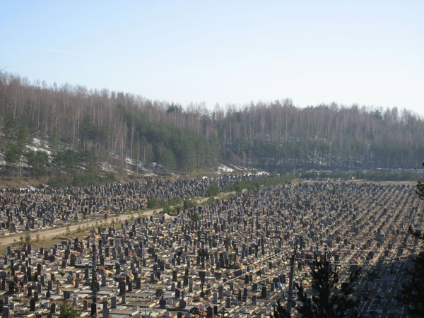 Кузьмоловское кладбище отберут у частников