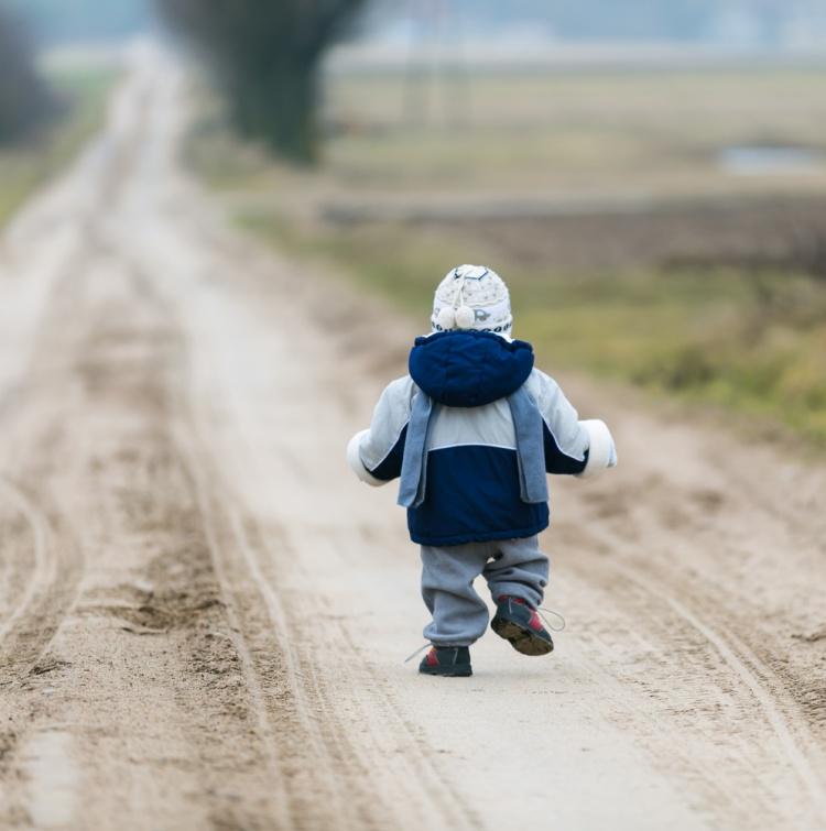 Во Всеволожском районе 2-летний малыш сбежал с дачи