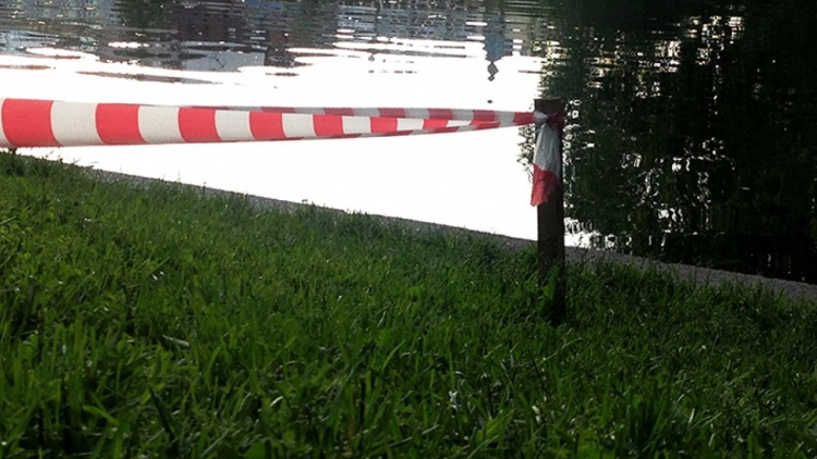 На озерах Всеволожского района нашли два трупа
