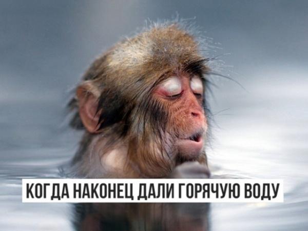 Газпром сжалился над Всеволожском и вернул людям возможность помыться