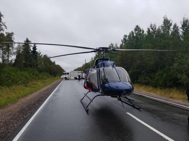 Двух женщин-грибников, заблудившихся в лесу, нашли с помощью вертолёта