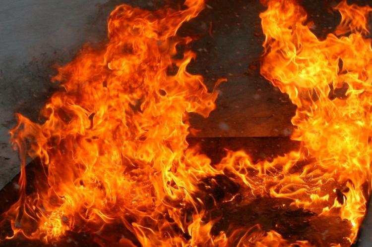 Двое сгоревших в деревне Проба были предварительно зарезаны