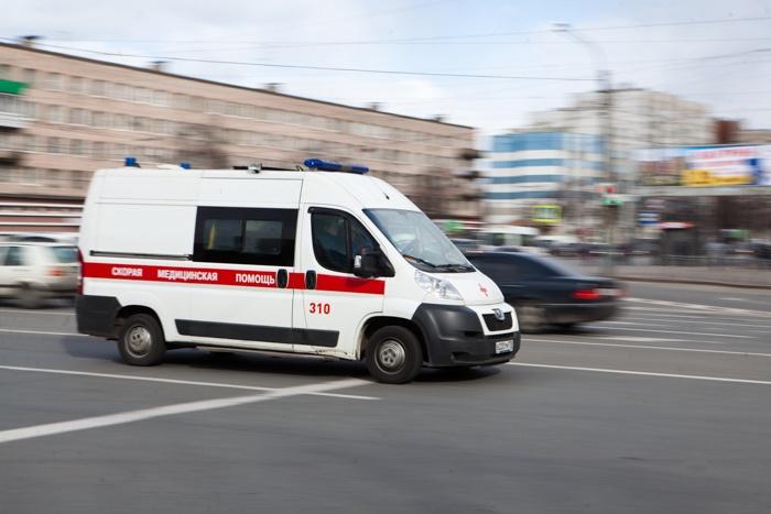 За один день в Ленинградской области нашли пять трупов